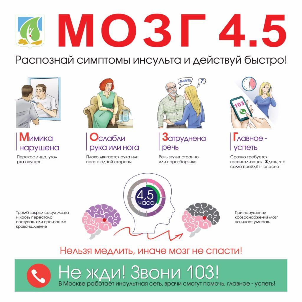 мозг 4.5